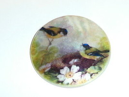 """Little Birds At Nest Button on Mother of Pearl MOP Shank Button 1+3/8"""" F... - $11.87"""