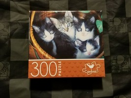 300 Piece Small Puzzle - Kittens in Basket (Cardinal)