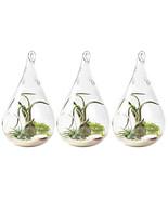 3pcs Home Clear Glass Flower Hanging Vase Teardrop Planter Terrarium Con... - $22.00