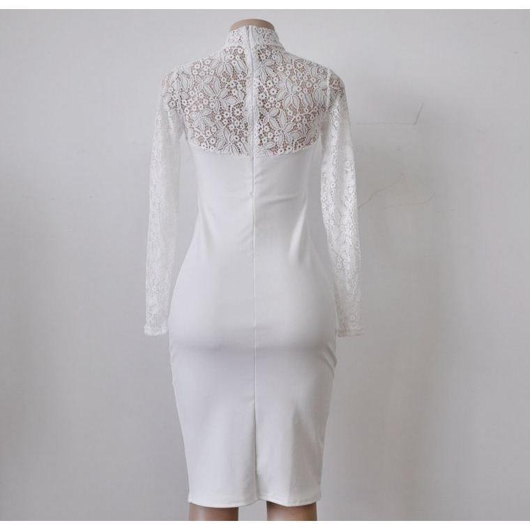 Turtleneck Long Sleeve Floral Lace Women Bodycon Dress