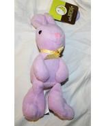 New Purple Plush Bunny Rabbit Easter Basket Stuffed Animal  - $5.93