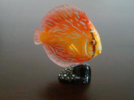 New Japan KAIYODO Furuta Choco Egg Miniature Pet Animal DISCUS FISH - $8.86