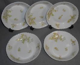 Haviland Porcelain BRETAGNE PATTERN Set (5) Coupe Soups LIMOGES FRANCE - $69.29