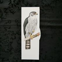 Vintage 1989 Bird of Prey Print ~ Tiny Sparrow Hawk - $12.59