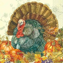 Traditional Thanksgiving Turkey 16 Ct Lunch Napkins - $3.26