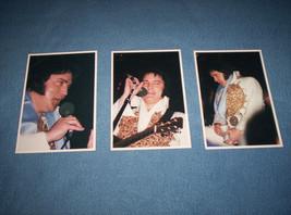 Elvis Presley 6x4 Photos Largo, MD 5/22/1977 Rosemarie Leech Stamped - $15.00