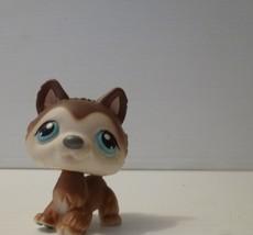 LITTLEST PET SHOP HUSKY #210 DIARY GRAY WHITE BLUE EYES PUPPY DOG - $7.91