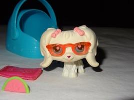 Littlest Pet Shop LPS 65 White Maltese Dog Puppy Bow Aqua Teal Blue Carr... - $259,11 MXN