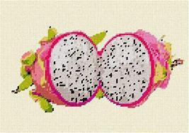 pepita Dragon Fruit Needlepoint Kit - $85.14