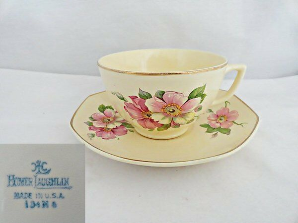 Homer Laughlin Wild Rose Yellowstone Cup & Saucer