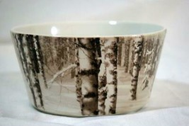 """Pier 1 Snow Frost Soup/Cereal Bowl 5 1/2"""" #420 - $17.99"""