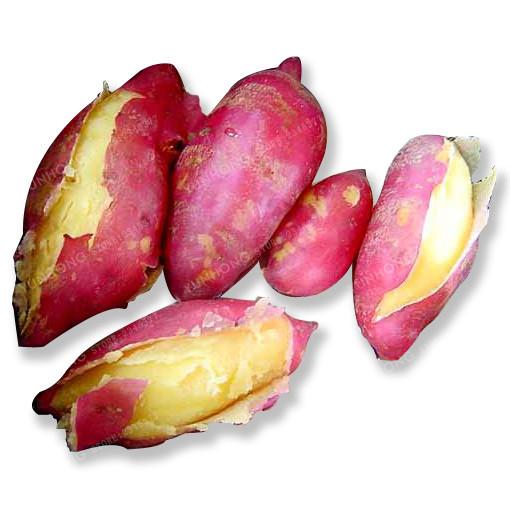 MIx Sweet Potato Seeds Vegetables Seeds Fresh Food Fruit And Vegetable 20Pcs/Bag