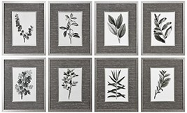 Uttermost Set of 8 Sepia Grey Leaves Prints - $393.80