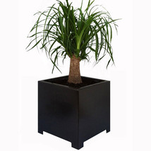 Square Metal Indoor / Outdoor Planter Flower Pot - $74.99+