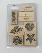 Used Stampin Up 2006 Beautiful Beach Mounted Conch Shell Starfish Seashell  - $34.64