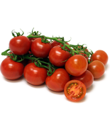 50 Seeds - Campari Tomato From Organically Grown Plants - $6.50