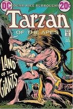 Tarzan Comic Book #211,   DC Comics Issue 1972  FINE UNREAD - $8.79