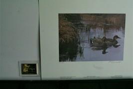 1997 Canada Wildlife Habitat Conver.  Print  >by Kerri Burnett > Med.Edi... - $64.35