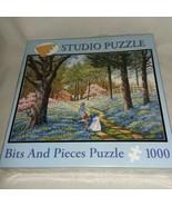 Sealed Studio Puzzle Bits and Pieces Blue Belles 1000 Pcs John Sloane Gi... - $21.99