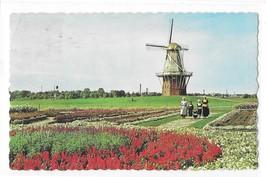 Holland Michigan Island Gardens De Zwaan Dutch Windmill Vintage Postcard - $4.99