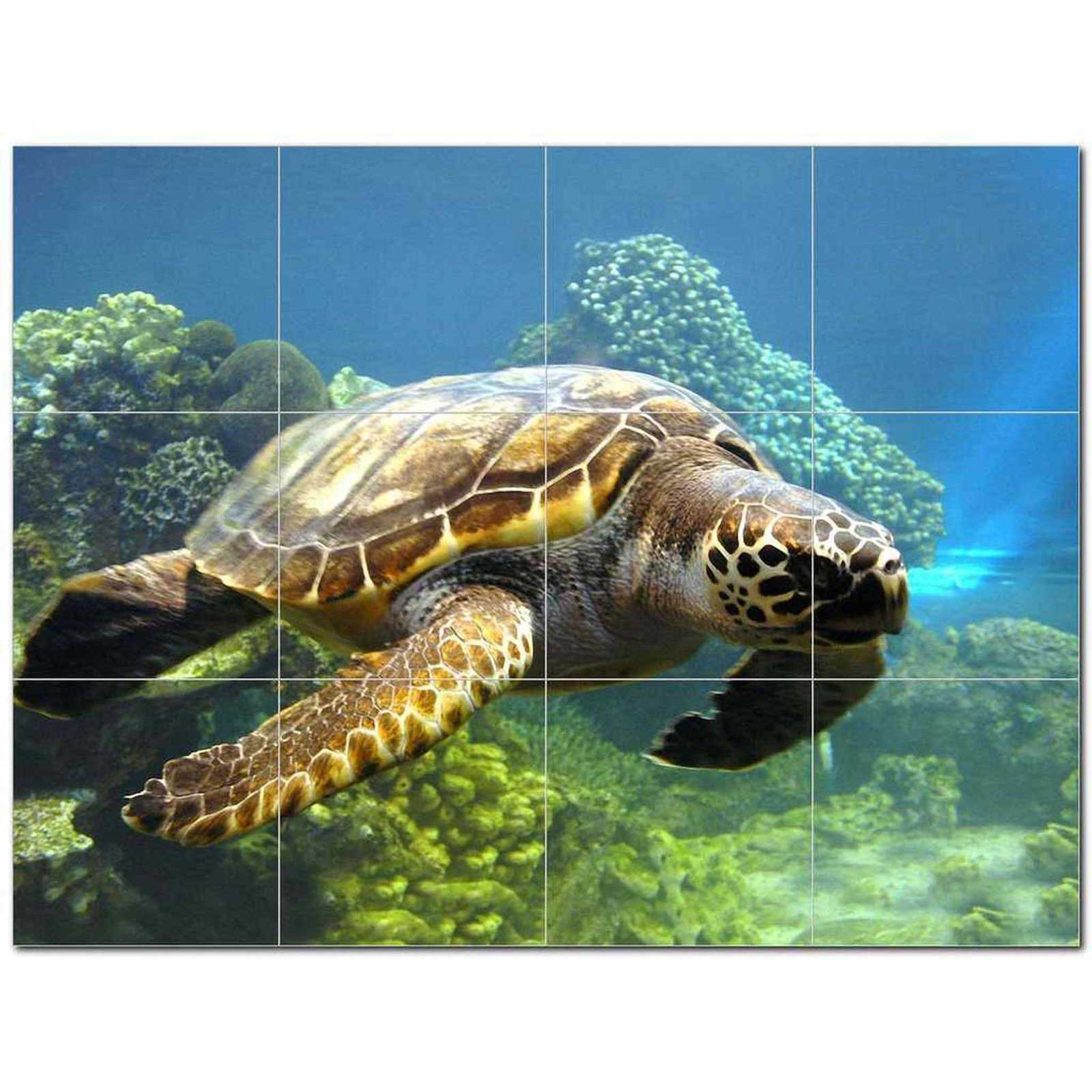 Primary image for Turtle Photo Ceramic Tile Mural Kitchen Backsplash Bathroom Shower BAZ406068