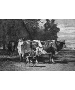 HERD of Cows - 1876 ETCHING Print after Painting by Troyon - $35.96