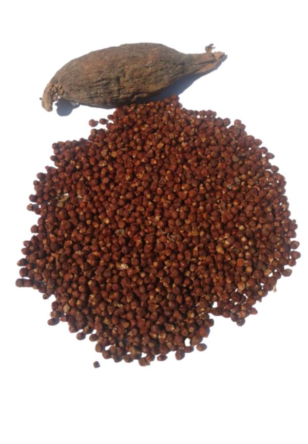 Primary image for Alligator Pepper,  Mbongo Spice , Hepper Pepper or  Grains of Paradise pods