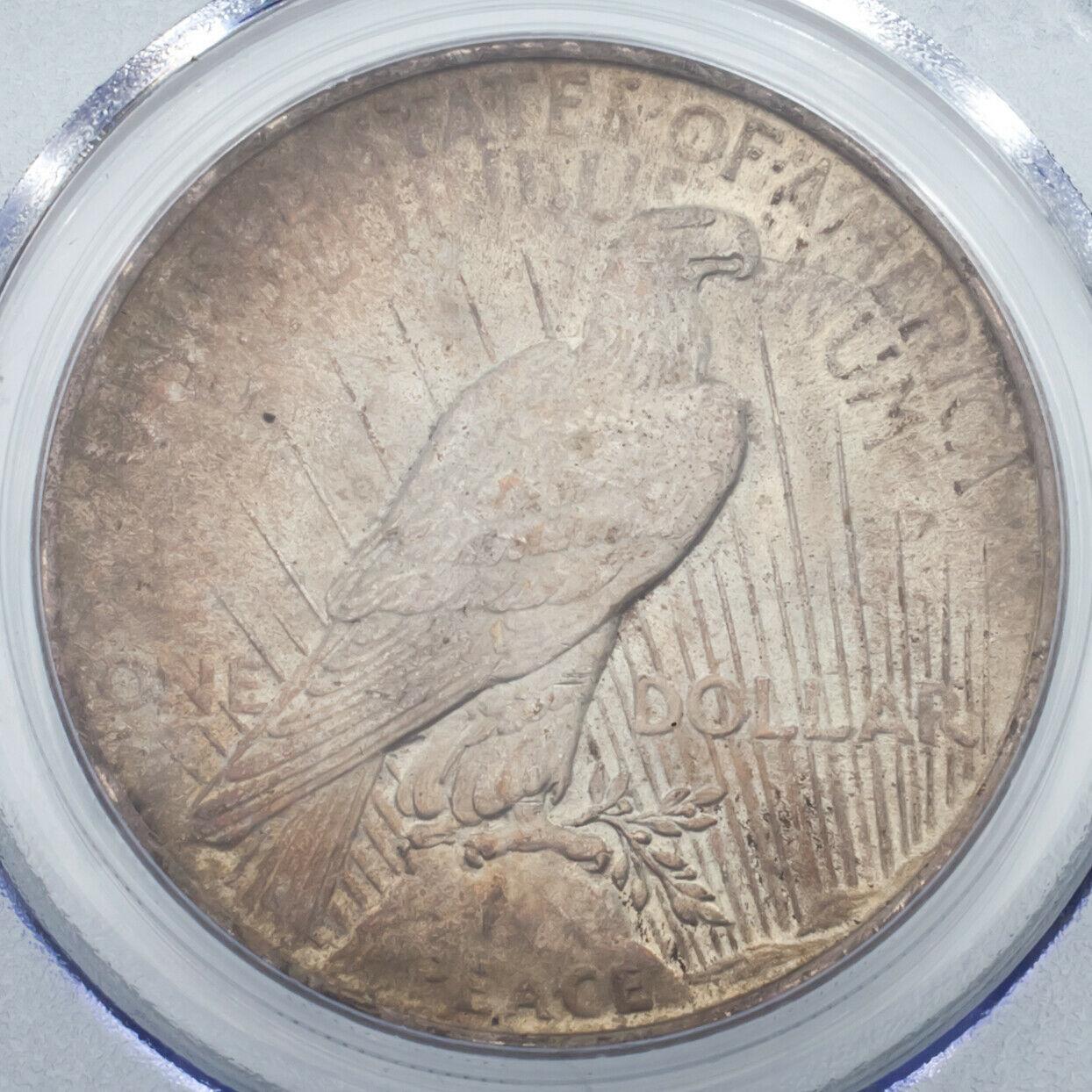 1923 Argent $1 Dollar Paix Gradé par PCGS comme MS-62 ! Joliment Tons Pièce ! image 4