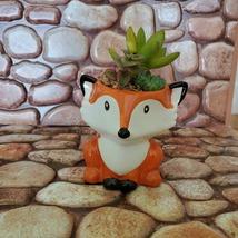 Mini Fox Planter with Succulent Arrangement, Succulent Gift, Animal Planter Pot image 5