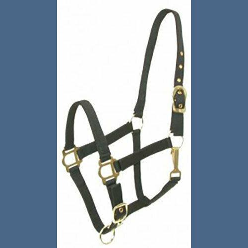 Pony Nylon Halter Adjustable NEW!  Black