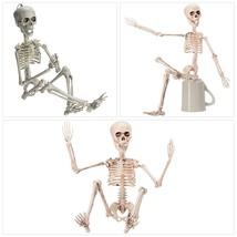 Prextex 19rdquo Posable Halloween Skeleton- Full Body Halloween Skeleton... - $297,08 MXN