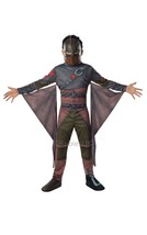 Rubie's Official Child's Dreamworks How To Train Your Dragon 2 Hiccup - ... - $43.79