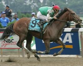 AFLEET ALEX 8X10 PHOTO HORSE RACING PICTURE RACE ACTION - $3.95
