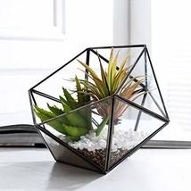 Purzest Glass Terrarium,Glass Geometric Terrarium Tabletop Succulent Pla... - $46.26 CAD