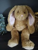 Build A Bear Bunny Rabbit Plush Floppy Ears Easter Bunny Stuffed Animal 18'' - $17.41