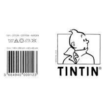 Tintin & Haddock single duvet cover set with square pillow image 4