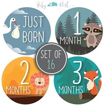 Baby Monthly Milestone Stickers - Set of 16 Uniquely Designed Woodland A... - $13.40