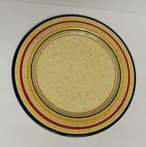 "Pfaltzgraff Sedona Dinner Plate Dish Stoneware Dinnerware Ceramic Striped 11.75"" - $13.81"
