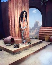 Cher Color 16x20 Canvas Giclee - $69.99