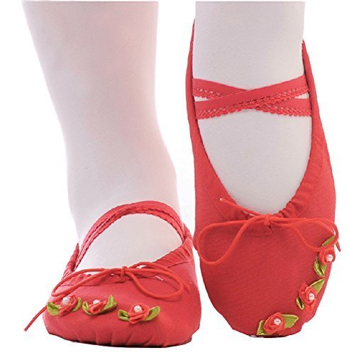 Dance Class Ballet Shoes/Canvas Dance Shoes for Pretty Girl (21CM Length)-Red