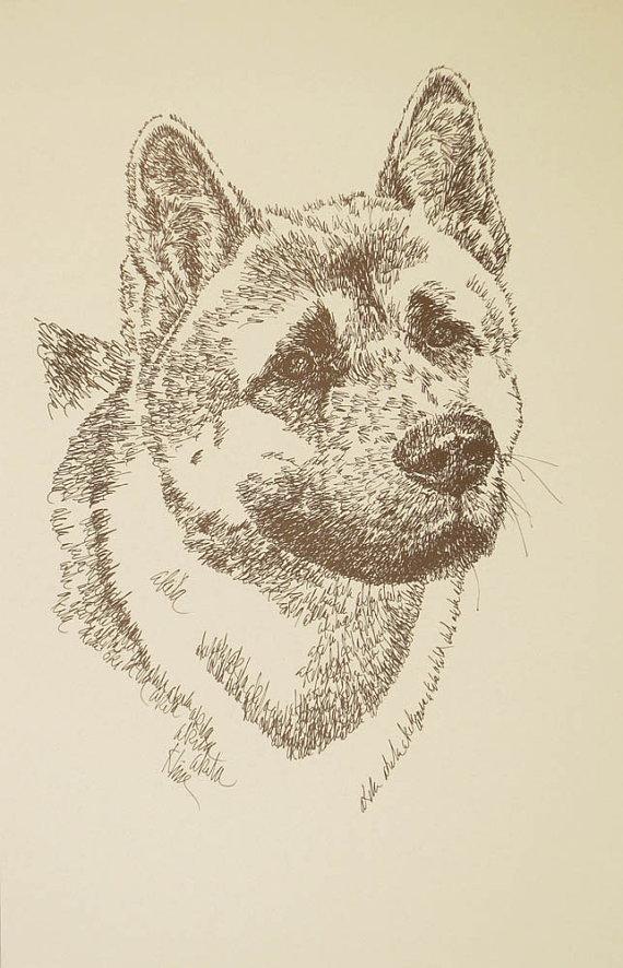 Akita dog art portrait drawing. PRINT 44 Kline adds dog's name free GREAT GIFT - $49.95