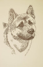 Akita dog art portrait drawing. PRINT 44 Kline adds dog's name free GREA... - $49.95