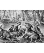 OTTER HUNT Dogs Forest Stream  - VICTORIAN Era Print - $26.96