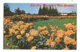 CA San Jose Municipal Rose Garden Santa Clara County California Vintage ... - $3.99