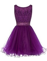 Short Lace Prom Dresses for Women Tulle Bowknot Homecoming Bridesmaid Dr... - $122.00