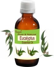 Eucalyptus Pure Natural Uncut Essential Oil 50 ml Eucalyptus globulus by... - $13.38