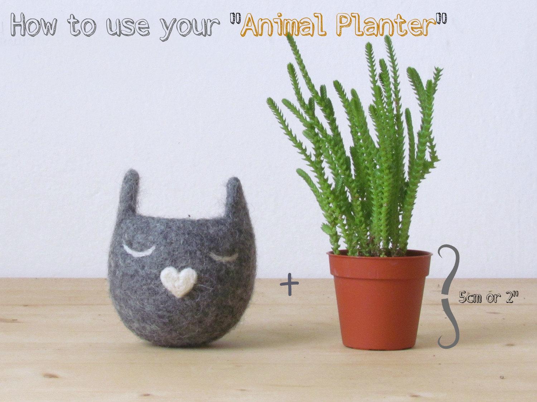 Succulent planter /spring bunny/White Rabbit planter/Felt planter/indoor planter