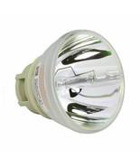 BenQ 5J.JGT05.001 Philips Projector Bare Lamp - $68.99
