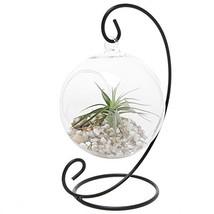 MyGift Charming Clear Glass Hanging Planter Terrarium Globe/Tea Light Ca... - $35.99