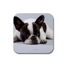 Cute Sweet French Bulldog Puppy Puppies Dogs Pet Animal (Square) Rubber ... - $2.99